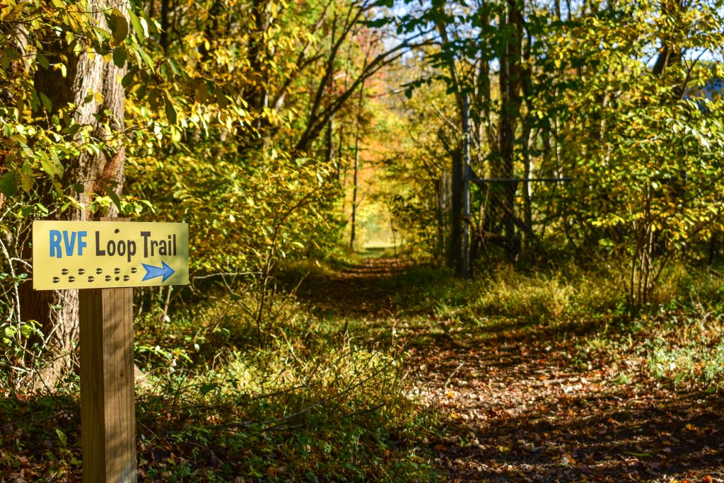 RVF Trail In Fall